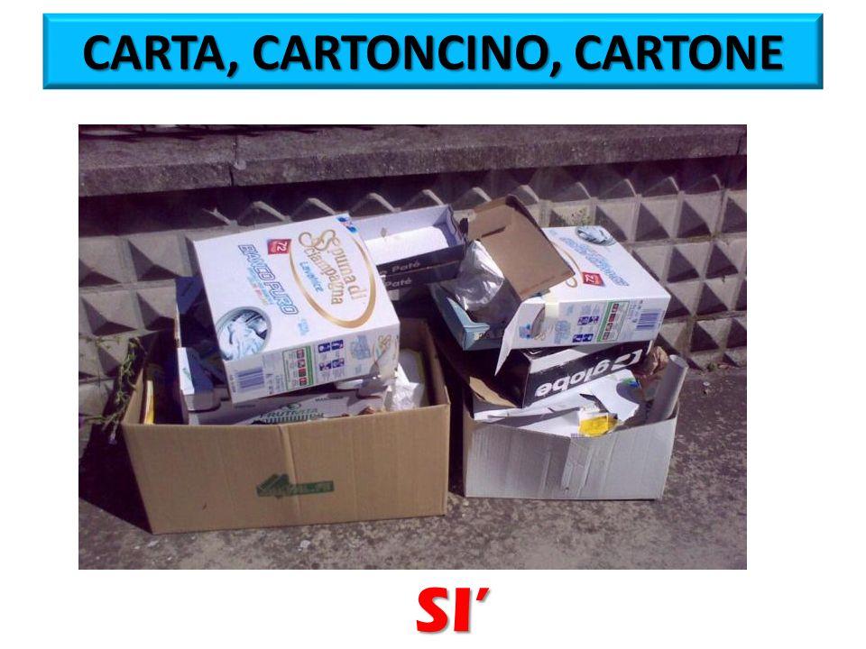 CARTA, CARTONCINO, CARTONE SI'