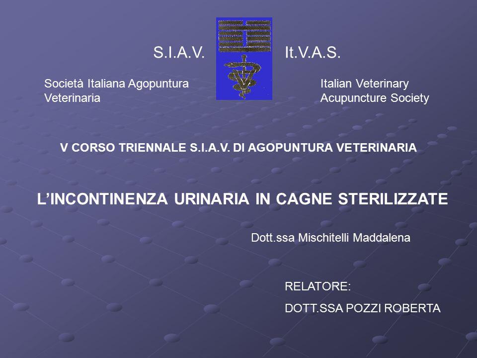 S.I.A.V.It.V.A.S.