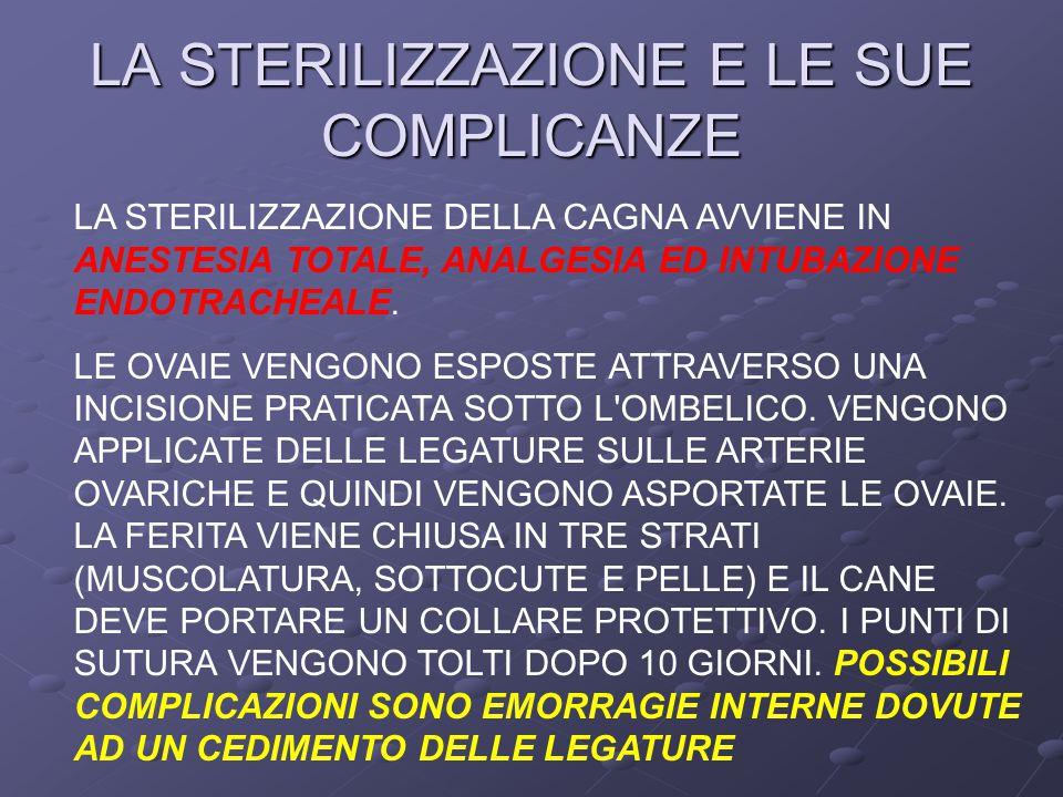 LA STERILIZZAZIONE E LE SUE COMPLICANZE LA STERILIZZAZIONE DELLA CAGNA AVVIENE IN ANESTESIA TOTALE, ANALGESIA ED INTUBAZIONE ENDOTRACHEALE.