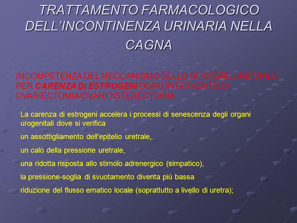 TRATTAMENTO FARMACOLOGICO DELL'INCONTINENZA URINARIA NELLA CAGNA INCOMPETENZA DEL MECCANISMO DELLO SFINTERE URETRALE PER CARENZA DI ESTROGENI DOPO INTERVENTO DI OVARIECTOMIA/OVARIOISTERECTOMIA La carenza di estrogeni accelera i processi di senescenza degli organi urogenitali dove si verifica un assottigliamento dell epitelio uretrale, un calo della pressione uretrale, una ridotta risposta allo stimolo adrenergico (simpatico), la pressione-soglia di svuotamento diventa più bassa riduzione del flusso ematico locale (soprattutto a livello di uretra);