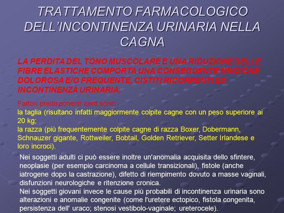 TRATTAMENTO FARMACOLOGICO DELL'INCONTINENZA URINARIA NELLA CAGNA LA PERDITA DEL TONO MUSCOLARE E UNA RIDUZIONE DELLE FIBRE ELASTICHE COMPORTA UNA CONSEGUENTE MINZIONE DOLOROSA E/O FREQUENTE, CISTITI RICORRENTI ED INCONTINENZA URINARIA.
