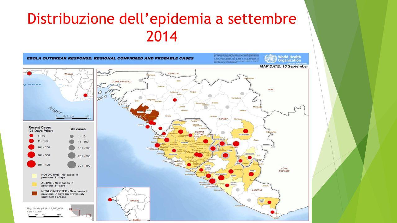 Distribuzione dell'epidemia a settembre 2014