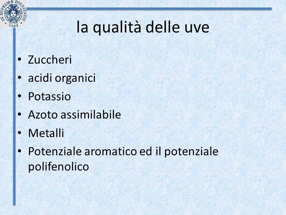la qualità delle uve Zuccheri acidi organici Potassio Azoto assimilabile Metalli Potenziale aromatico ed il potenziale polifenolico