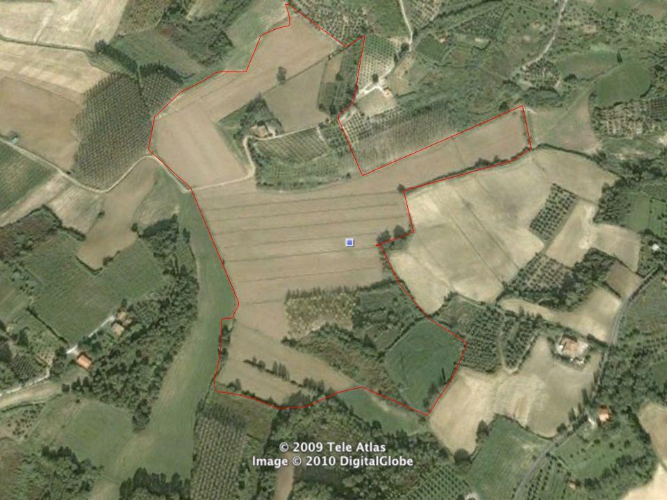 Azienda Agricola Lischeto 1 Nelle colline della Toscana centrale (Volterra, PI) vi è una forte presenza di allevatori sardi che praticano l allevamento degli ovini da latte e, nella maggior parte dei casi, conferiscono il latte ad una locale cooperativa o direttamente ai caseifici.