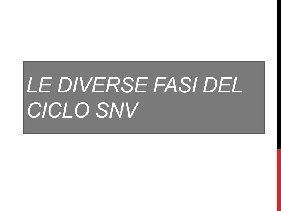 LE DIVERSE FASI DEL CICLO SNV