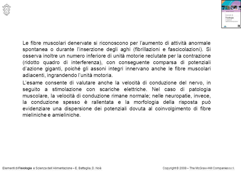 Elementi di Fisiologia e Scienza dell'Alimentazione – E. Battaglia, D. NoèCopyright © 2008 – The McGraw-Hill Companies s.r.l. Le fibre muscolari dener
