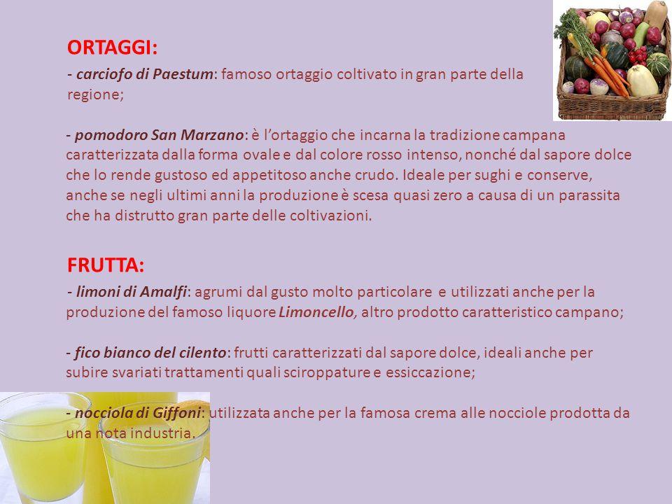 ORTAGGI: - carciofo di Paestum: famoso ortaggio coltivato in gran parte della regione; - pomodoro San Marzano: è l'ortaggio che incarna la tradizione campana caratterizzata dalla forma ovale e dal colore rosso intenso, nonché dal sapore dolce che lo rende gustoso ed appetitoso anche crudo.
