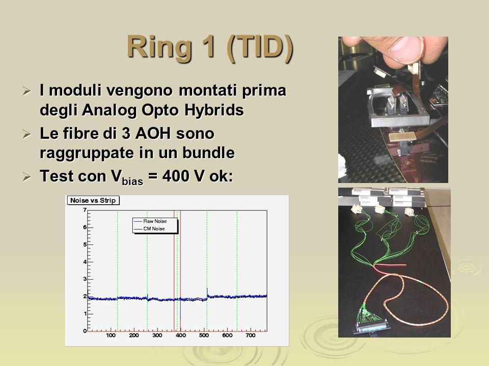 Ring 1 (TID)  I moduli vengono montati prima degli Analog Opto Hybrids  Le fibre di 3 AOH sono raggruppate in un bundle  Test con V bias = 400 V ok:
