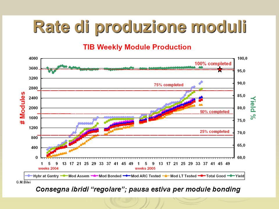 Rate di produzione moduli Consegna ibridi regolare ; pausa estiva per module bonding