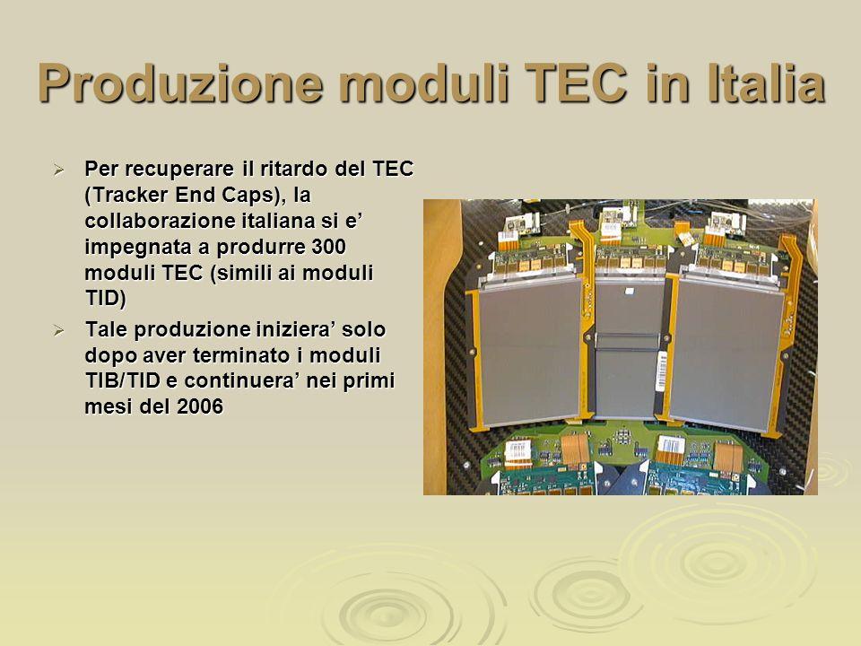 Produzione moduli TEC in Italia  Per recuperare il ritardo del TEC (Tracker End Caps), la collaborazione italiana si e' impegnata a produrre 300 moduli TEC (simili ai moduli TID)  Tale produzione iniziera' solo dopo aver terminato i moduli TIB/TID e continuera' nei primi mesi del 2006