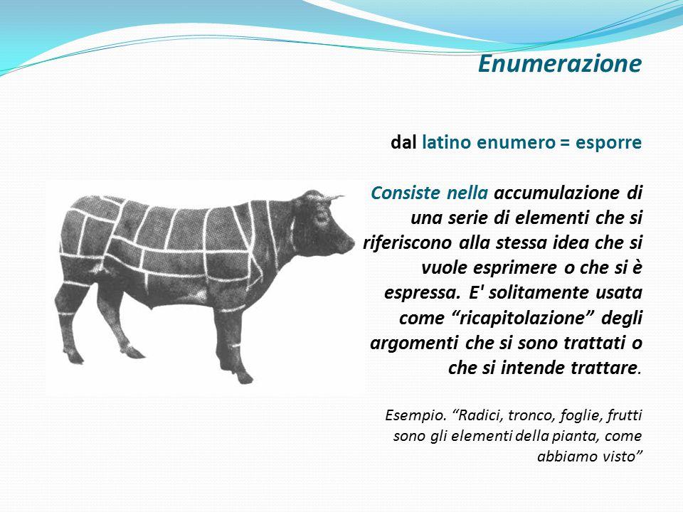 Enumerazione dal latino enumero = esporre Consiste nella accumulazione di una serie di elementi che si riferiscono alla stessa idea che si vuole espri