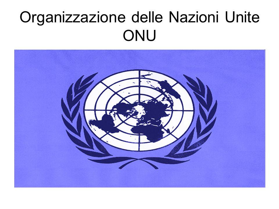 Organizzazione delle Nazioni Unite ONU