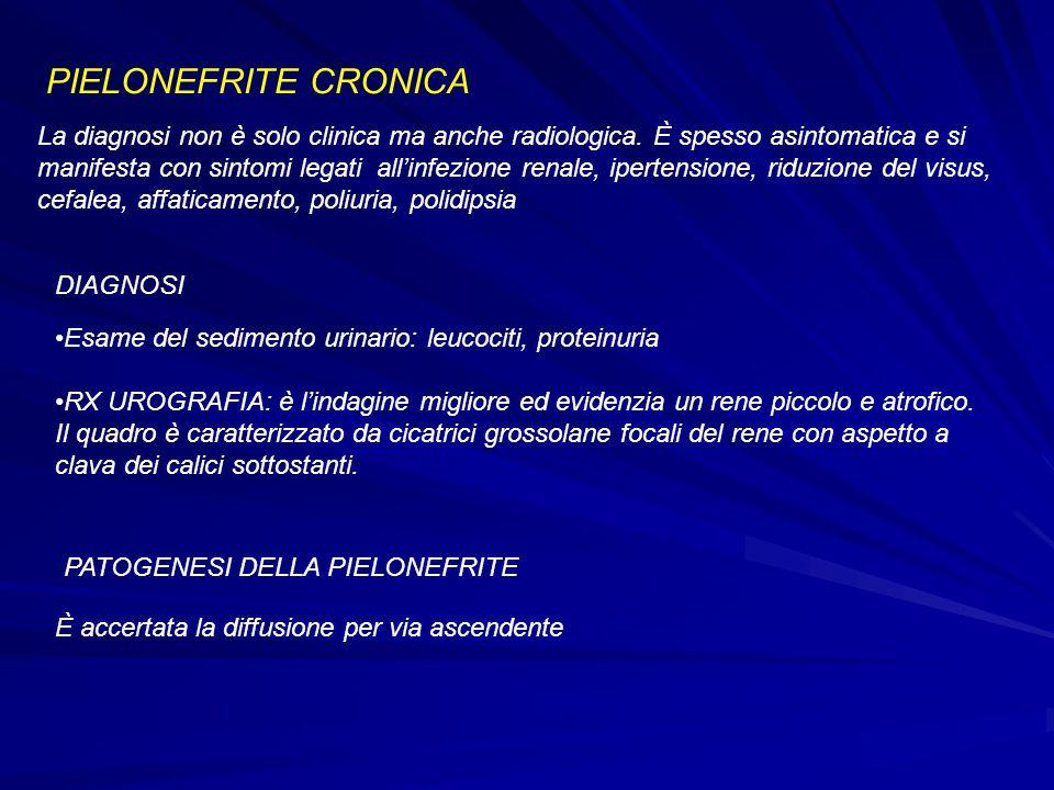 PIELONEFRITE CRONICA La diagnosi non è solo clinica ma anche radiologica. È spesso asintomatica e si manifesta con sintomi legati all'infezione renale