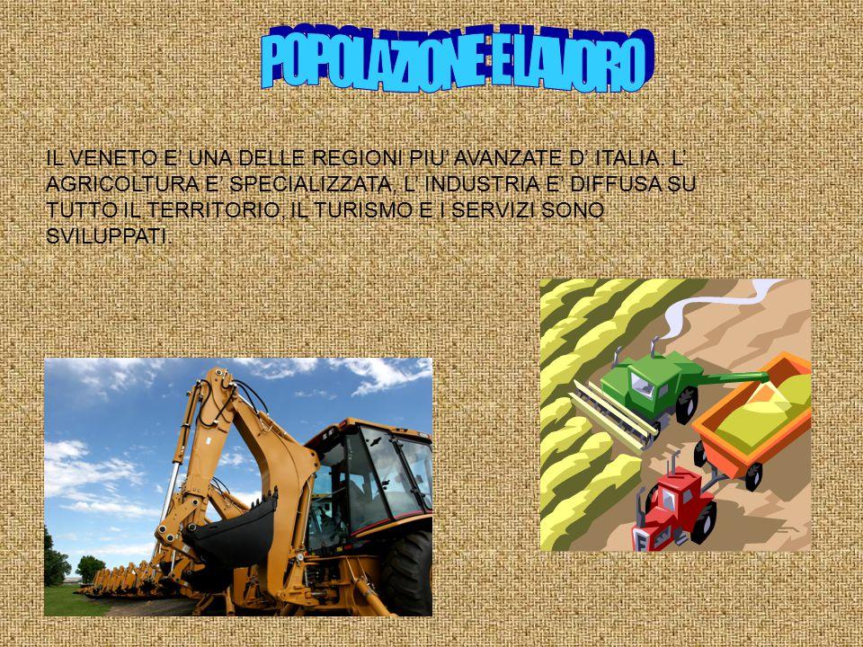 IL VENETO E' UNA DELLE REGIONI PIU' AVANZATE D' ITALIA. L' AGRICOLTURA E' SPECIALIZZATA, L' INDUSTRIA E' DIFFUSA SU TUTTO IL TERRITORIO, IL TURISMO E