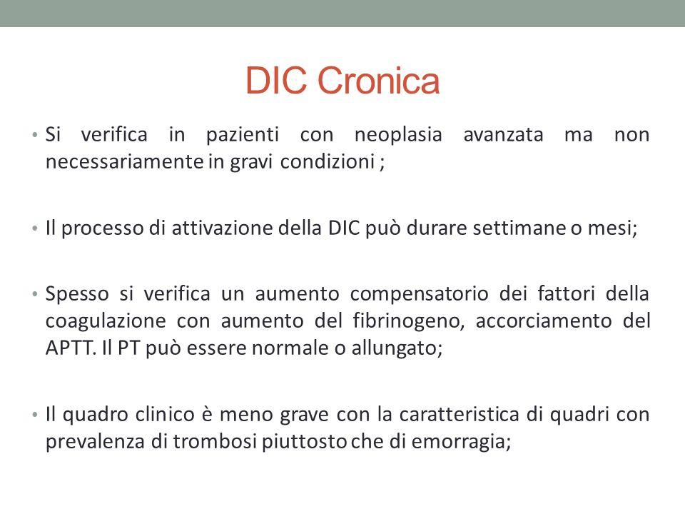 DIC Cronica Si verifica in pazienti con neoplasia avanzata ma non necessariamente in gravi condizioni ; Il processo di attivazione della DIC può durar