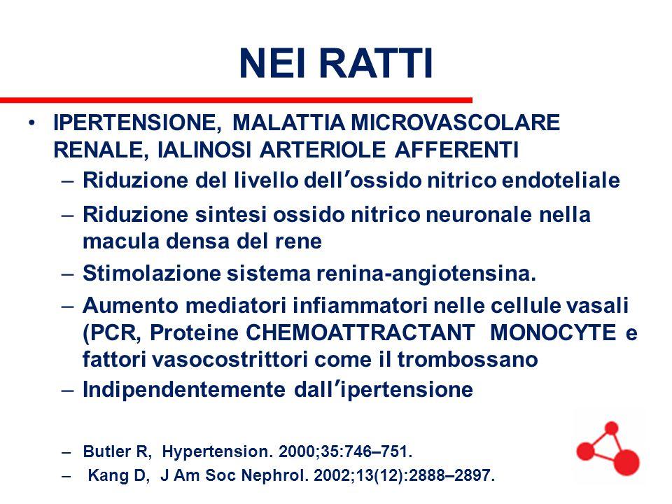 NEI RATTI IPERTENSIONE, MALATTIA MICROVASCOLARE RENALE, IALINOSI ARTERIOLE AFFERENTI –Riduzione del livello dell'ossido nitrico endoteliale –Riduzione