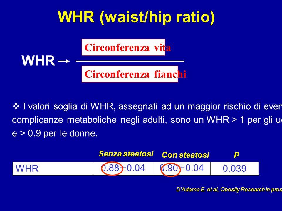 WHR (waist/hip ratio) WHR0.88±0.040.90±0.040.039 Con steatosi Senza steatosip Circonferenza vita Circonferenza fianchi WHR  I valori soglia di WHR, assegnati ad un maggior rischio di eventuali complicanze metaboliche negli adulti, sono un WHR > 1 per gli uomini e > 0.9 per le donne.