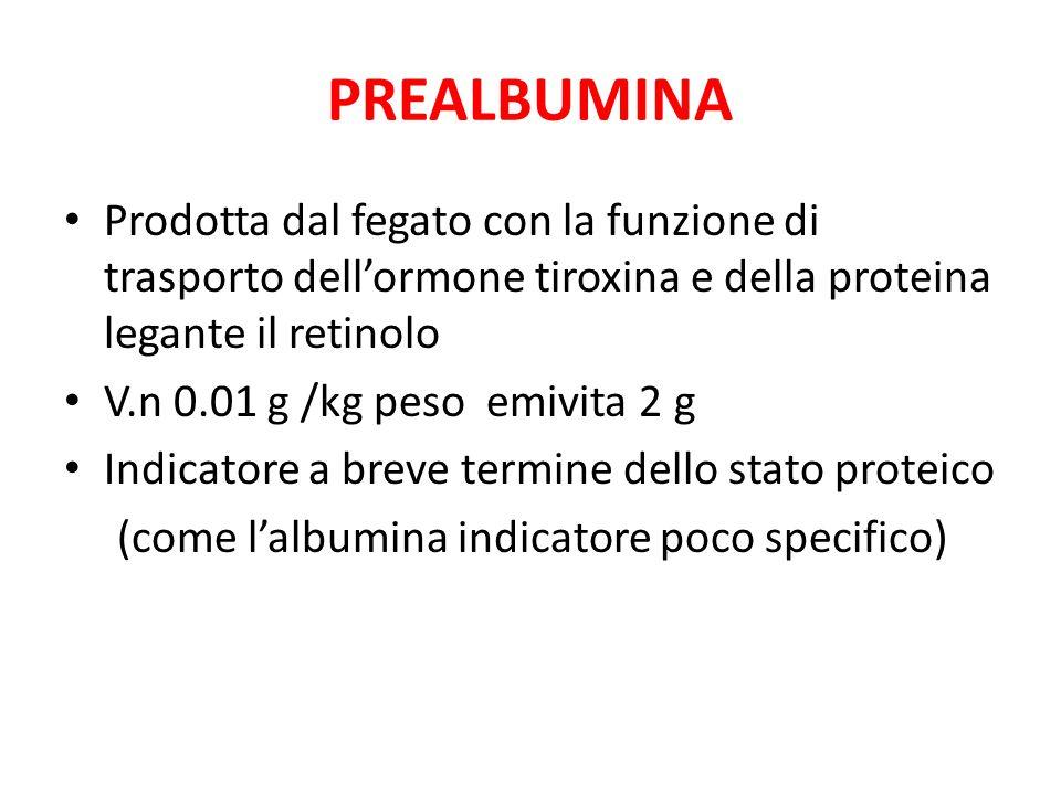 PREALBUMINA Prodotta dal fegato con la funzione di trasporto dell'ormone tiroxina e della proteina legante il retinolo V.n 0.01 g /kg peso emivita 2 g