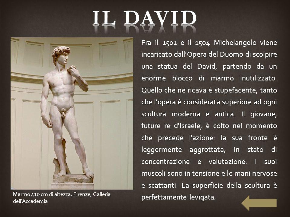 Fra il 1501 e il 1504 Michelangelo viene incaricato dall'Opera del Duomo di scolpire una statua del David, partendo da un enorme blocco di marmo inuti