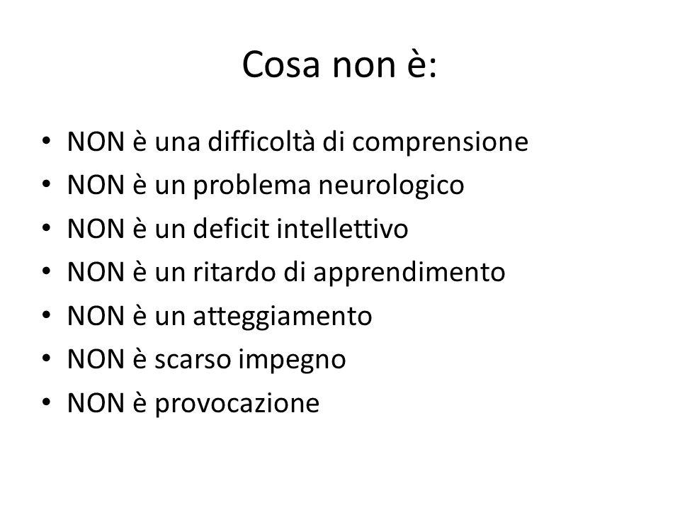 Cosa non è: NON è una difficoltà di comprensione NON è un problema neurologico NON è un deficit intellettivo NON è un ritardo di apprendimento NON è u