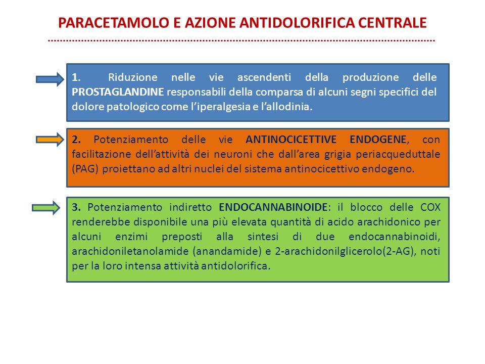 PARACETAMOLO E AZIONE ANTIDOLORIFICA CENTRALE 2. Potenziamento delle vie ANTINOCICETTIVE ENDOGENE, con facilitazione dell'attività dei neuroni che dal