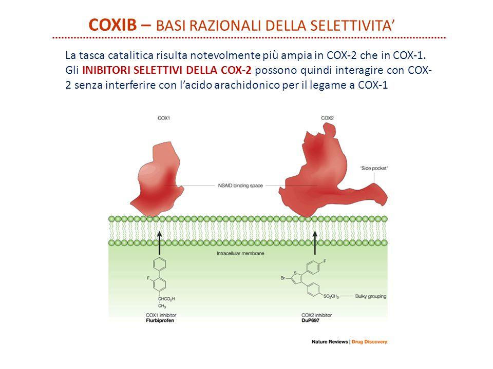COXIB – BASI RAZIONALI DELLA SELETTIVITA' La tasca catalitica risulta notevolmente più ampia in COX-2 che in COX-1. Gli INIBITORI SELETTIVI DELLA COX-
