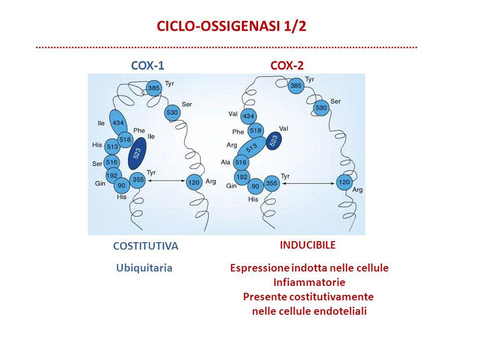 CICLO-OSSIGENASI 1/2 COSTITUTIVA COX-1COX-2 INDUCIBILE UbiquitariaEspressione indotta nelle cellule Infiammatorie Presente costitutivamente nelle cell
