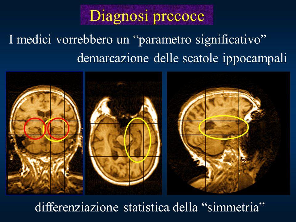 """differenziazione statistica della """"simmetria"""" Diagnosi precoce I medici vorrebbero un """"parametro significativo"""" demarcazione delle scatole ippocampali"""