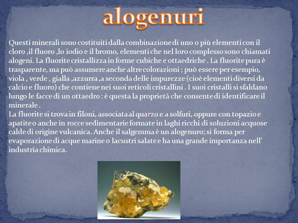 Questi minerali sono costituiti dalla combinazione di uno o più elementi con il cloro,il fluoro,lo iodio e il bromo, elementi che nel loro complesso sono chiamati alogeni.