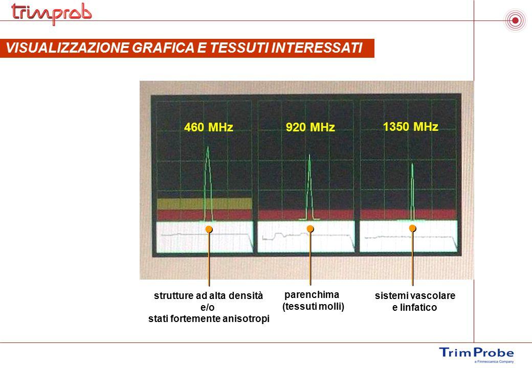 VISUALIZZAZIONE GRAFICA E TESSUTI INTERESSATI 460 MHz920 MHz 1350 MHz strutture ad alta densità e/o stati fortemente anisotropi parenchima (tessuti mo
