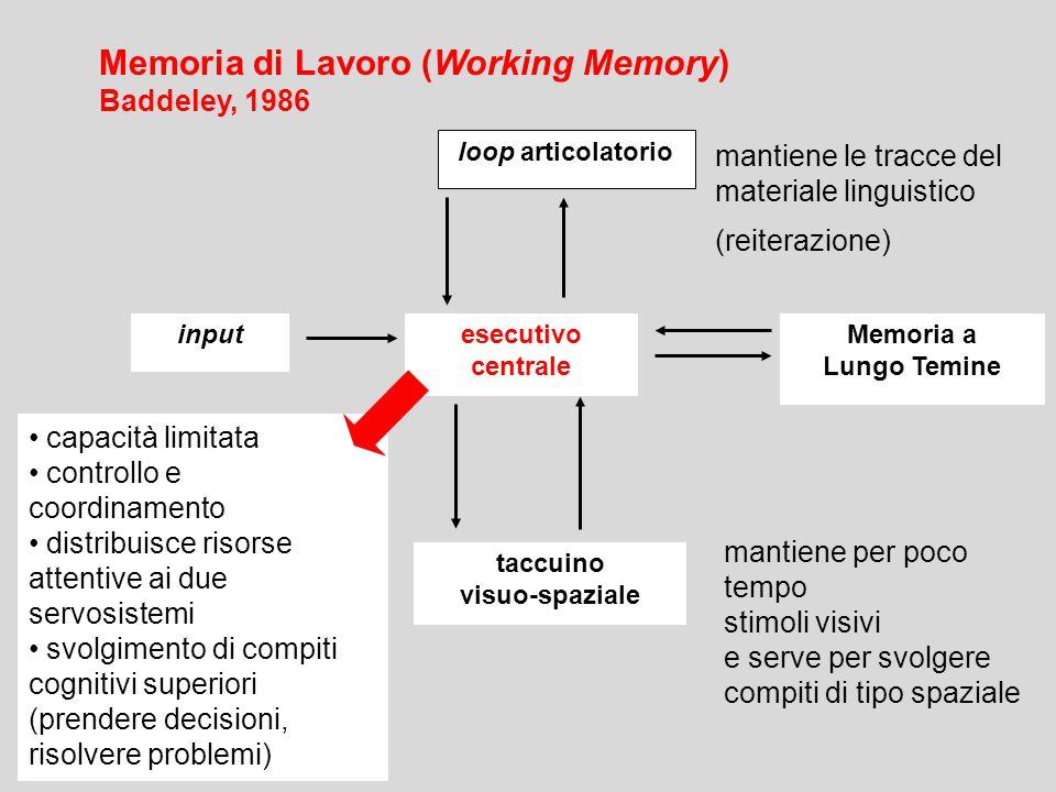 loop articolatorio esecutivo centrale Memoria a Lungo Temine input Memoria di Lavoro (Working Memory) Baddeley, 1986 capacità limitata controllo e coo