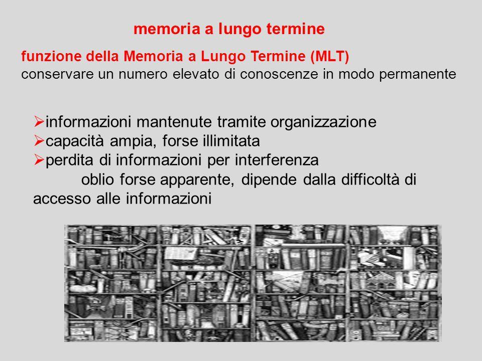 funzione della Memoria a Lungo Termine (MLT) conservare un numero elevato di conoscenze in modo permanente memoria a lungo termine  informazioni mant
