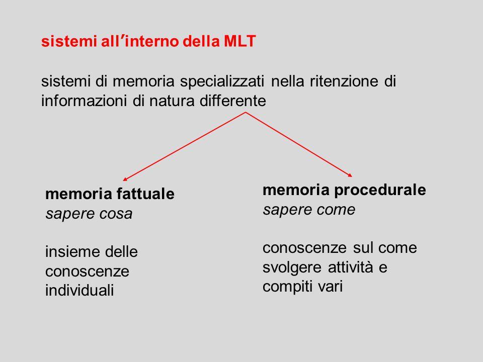 sistemi di memoria specializzati nella ritenzione di informazioni di natura differente memoria procedurale sapere come conoscenze sul come svolgere attività e compiti vari memoria fattuale sapere cosa insieme delle conoscenze individuali sistemi all'interno della MLT