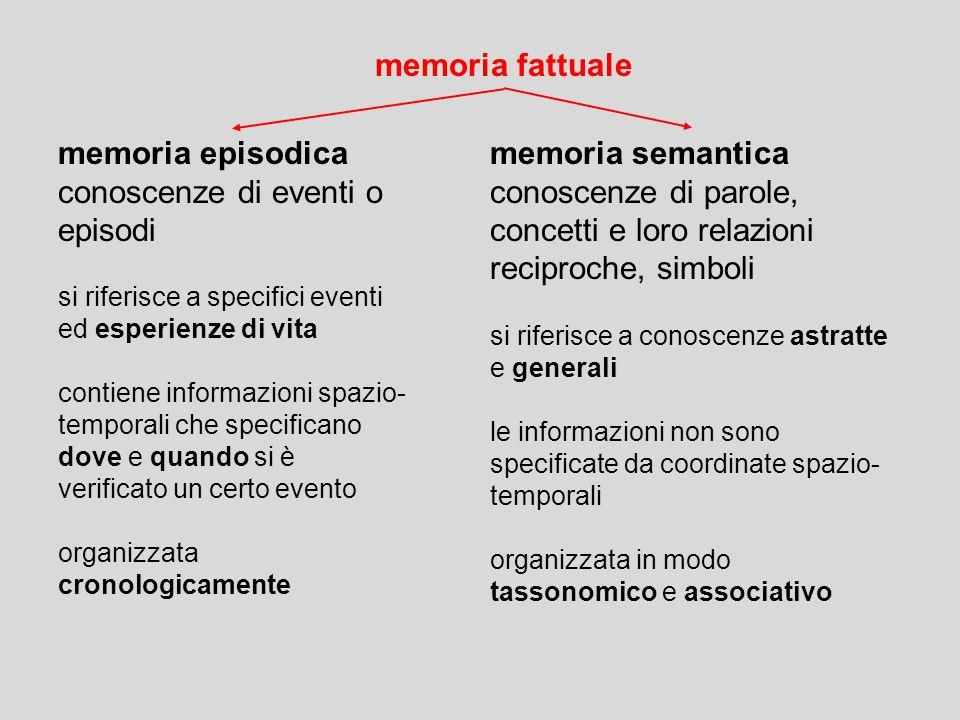 memoria fattuale memoria semantica conoscenze di parole, concetti e loro relazioni reciproche, simboli si riferisce a conoscenze astratte e generali l