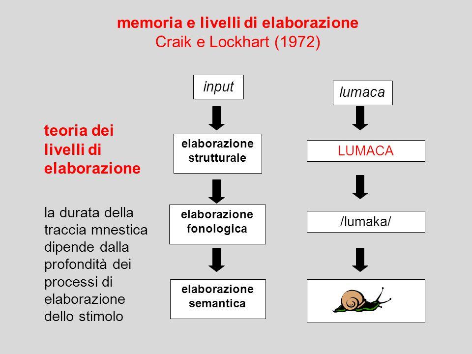 LUMACA /lumaka/ input elaborazione strutturale elaborazione fonologica elaborazione semantica lumaca memoria e livelli di elaborazione Craik e Lockhart (1972) teoria dei livelli di elaborazione la durata della traccia mnestica dipende dalla profondità dei processi di elaborazione dello stimolo