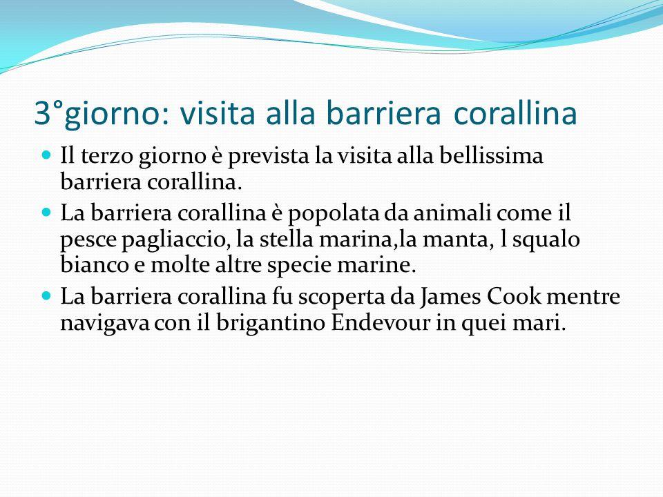 3°giorno: visita alla barriera corallina Il terzo giorno è prevista la visita alla bellissima barriera corallina.