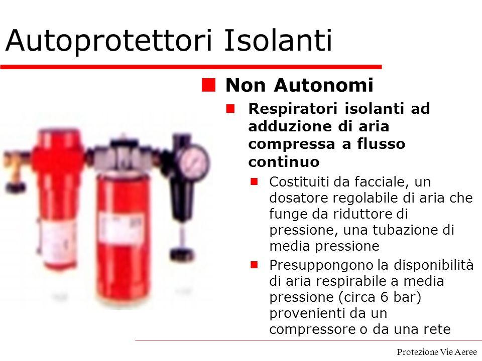 Protezione Vie Aeree Autoprotettori Isolanti Non Autonomi Respiratori isolanti ad adduzione di aria compressa a flusso continuo  Costituiti da faccia
