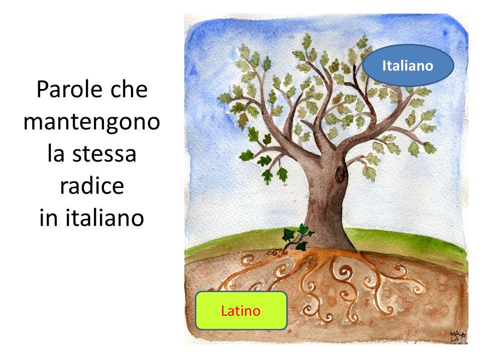 Parole latine !!! di Giulia Muscariello e Chiara Memoli 1G