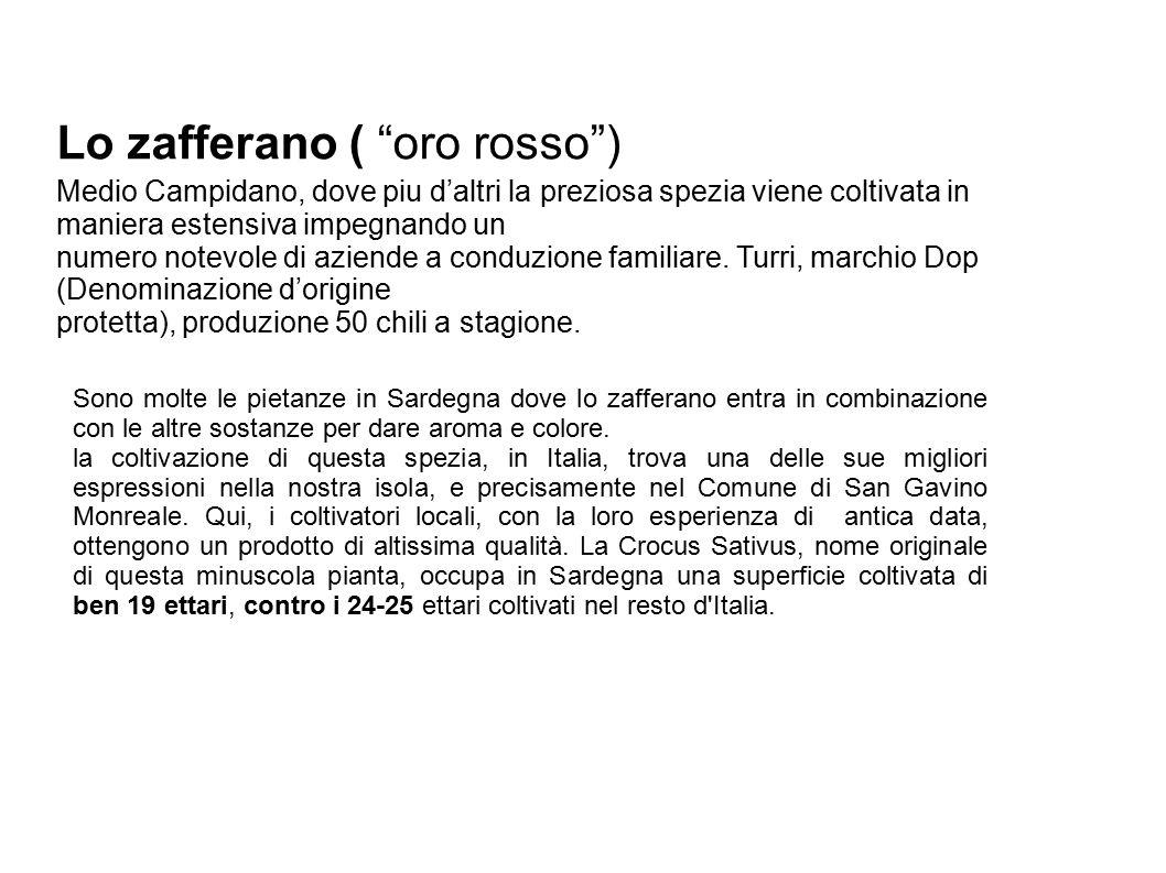 Lo zafferano ( oro rosso ) Medio Campidano, dove piu d'altri la preziosa spezia viene coltivata in maniera estensiva impegnando un numero notevole di aziende a conduzione familiare.