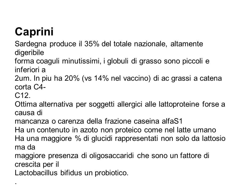 Caprini Sardegna produce il 35% del totale nazionale, altamente digeribile forma coaguli minutissimi, i globuli di grasso sono piccoli e inferiori a 2