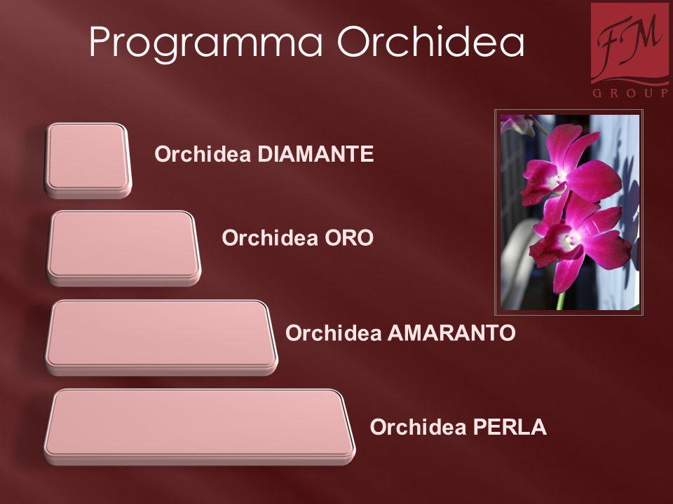 Orchidea DIAMANTE Orchidea PERLA Orchidea ORO Orchidea AMARANTO Programma Orchidea