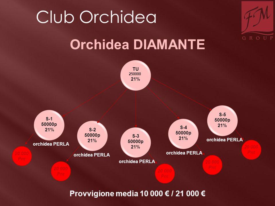 TU 250000 21% S-2 50000p 21% S-1 50000p 21% S-3 50000p 21% S-4 50000p 21% S-5 50000p 21% orchidea PERLA Provvigione media 10 000 € / 21 000 € Orchidea