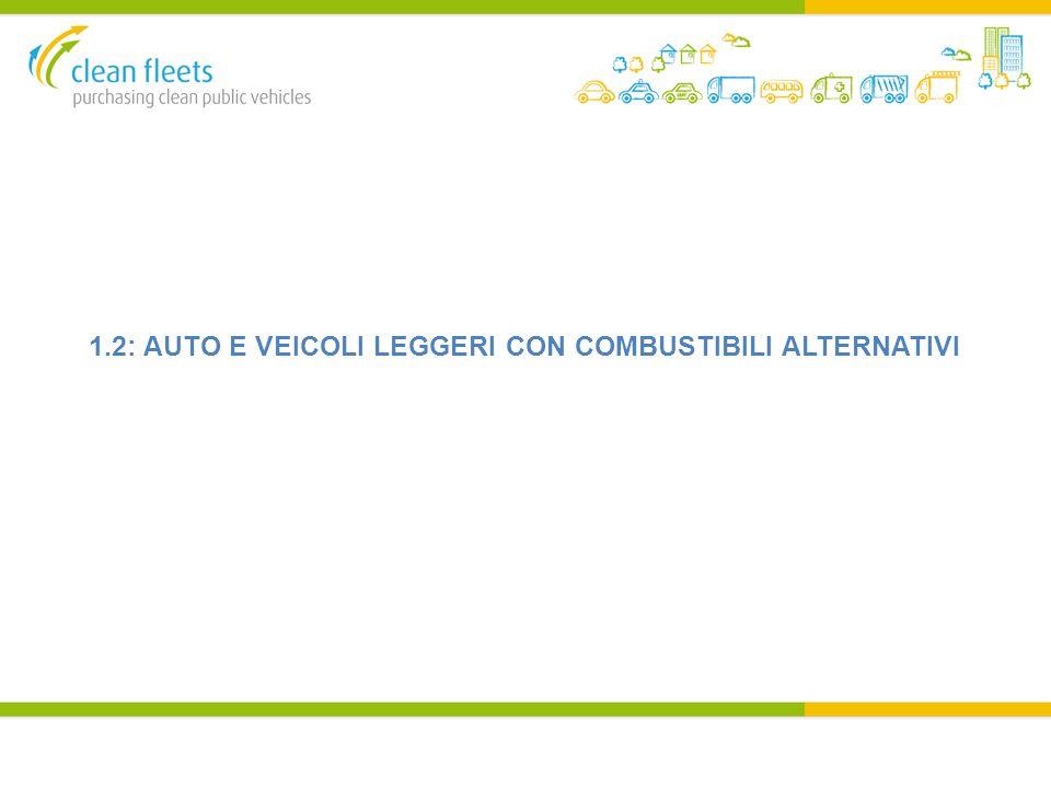 1.2: AUTO E VEICOLI LEGGERI CON COMBUSTIBILI ALTERNATIVI