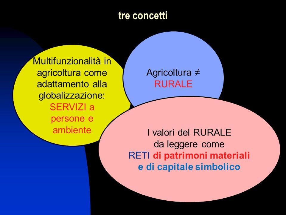 Multifunzionalità in agricoltura come adattamento alla globalizzazione: SERVIZI a persone e ambiente Agricoltura ≠ RURALE I valori del RURALE da leggere come RETI di patrimoni materiali e di capitale simbolico tre concetti