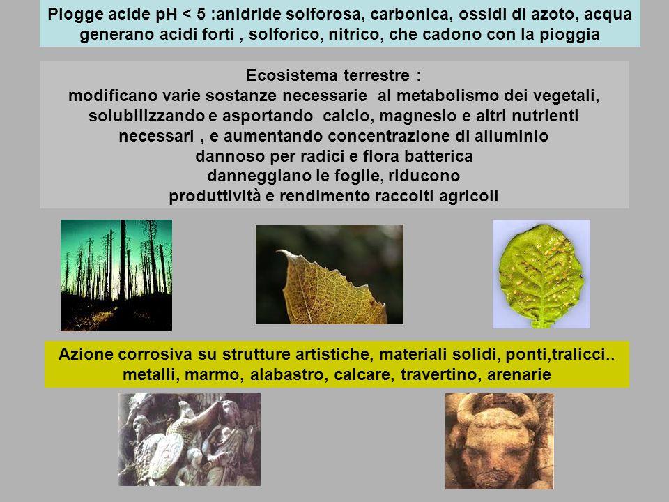 Piogge acide pH < 5 :anidride solforosa, carbonica, ossidi di azoto, acqua generano acidi forti, solforico, nitrico, che cadono con la pioggia Ecosistema terrestre : modificano varie sostanze necessarie al metabolismo dei vegetali, solubilizzando e asportando calcio, magnesio e altri nutrienti necessari, e aumentando concentrazione di alluminio dannoso per radici e flora batterica danneggiano le foglie, riducono produttività e rendimento raccolti agricoli Azione corrosiva su strutture artistiche, materiali solidi, ponti,tralicci..