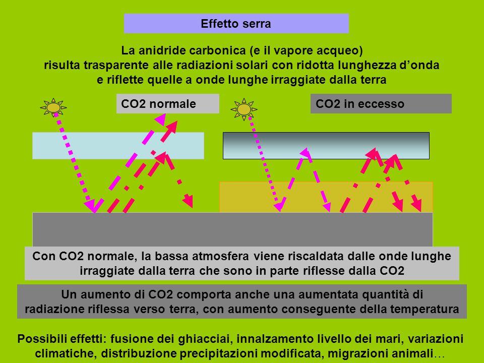 Effetto serra La anidride carbonica (e il vapore acqueo) risulta trasparente alle radiazioni solari con ridotta lunghezza d'onda e riflette quelle a onde lunghe irraggiate dalla terra CO2 normaleCO2 in eccesso Con CO2 normale, la bassa atmosfera viene riscaldata dalle onde lunghe irraggiate dalla terra che sono in parte riflesse dalla CO2 Un aumento di CO2 comporta anche una aumentata quantità di radiazione riflessa verso terra, con aumento conseguente della temperatura Possibili effetti: fusione dei ghiacciai, innalzamento livello dei mari, variazioni climatiche, distribuzione precipitazioni modificata, migrazioni animali…