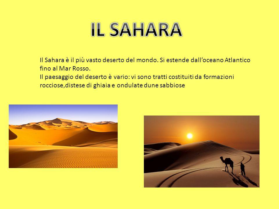 Il Sahara è il più vasto deserto del mondo. Si estende dall'oceano Atlantico fino al Mar Rosso.