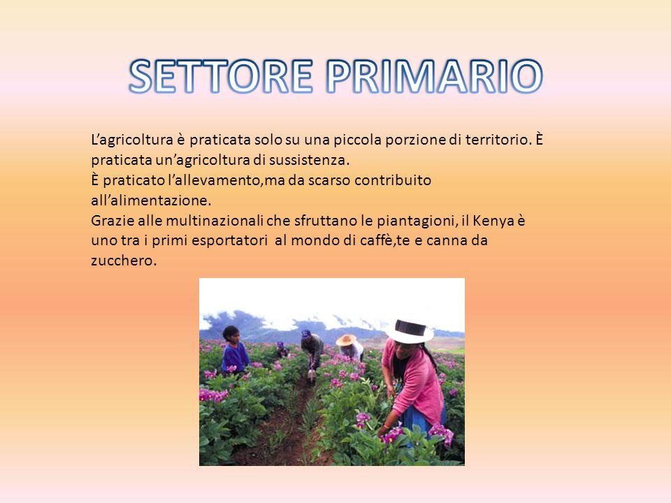 L'agricoltura è praticata solo su una piccola porzione di territorio.
