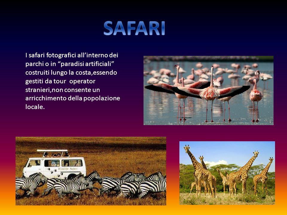 I safari fotografici all'interno dei parchi o in paradisi artificiali costruiti lungo la costa,essendo gestiti da tour operator stranieri,non consente un arricchimento della popolazione locale.