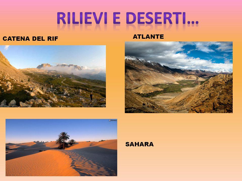 CATENA DEL RIF ATLANTE SAHARA